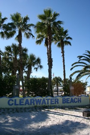Clearwater Photo