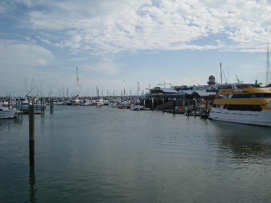 Boat Harbour Resort: Le port d'Hervey Bay