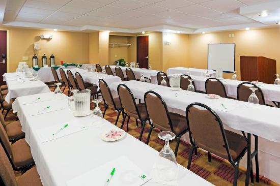 Holiday Inn Hotel & Suites Rochester - Marketplace: Meeting Rooms