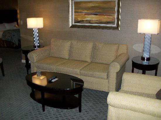 Omni Dallas Hotel at Park West: living room of the suite