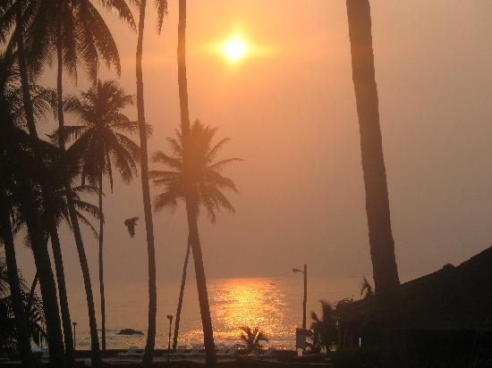 Coconut Grove Beach Resort: beautiful sunrise!