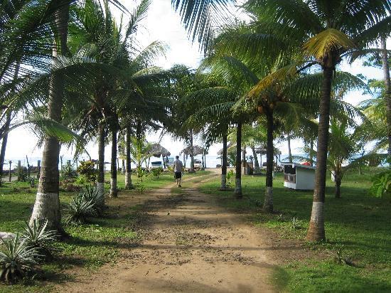 Paraiso Beach Hotel: Path to bungalows