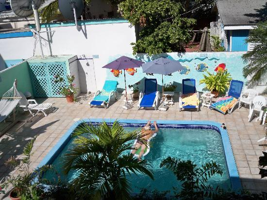 Turquoise Shell Inn: The dip pool