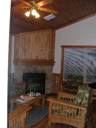 James River State Park: Living Room fireplace