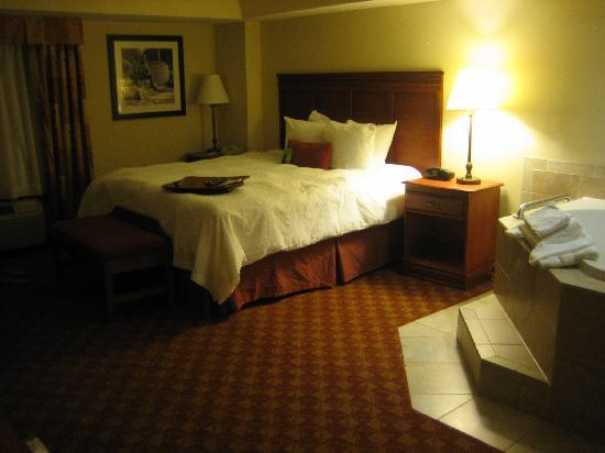 Hampton Inn & Suites Knoxville - Downtown: room with jacuzzi!