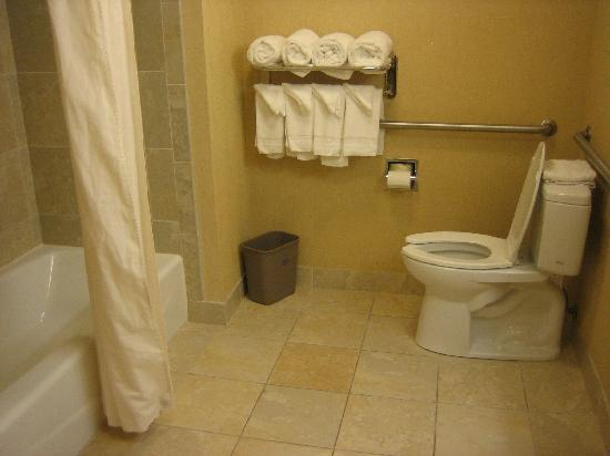 Hampton Inn & Suites Knoxville - Downtown: full bathroom (in addition to jacuzzi)