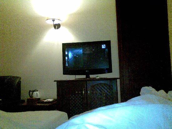 Kibo Palace Hotel: room with plasma Tv