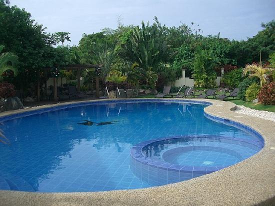 Alona Golden Palm Resort: More of pool