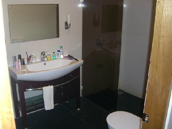 Alona Golden Palm Resort: Luxurious Shower room