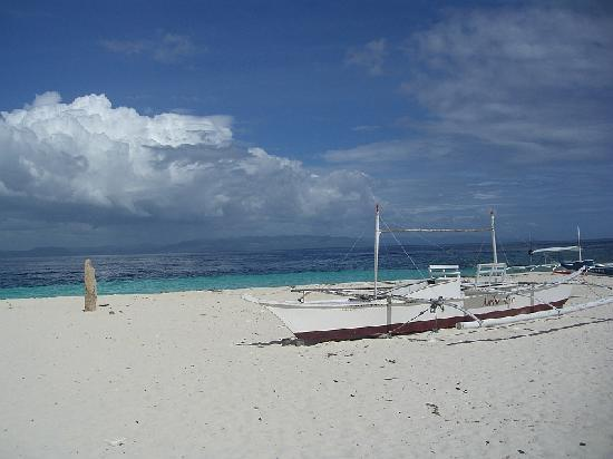 Alona Golden Palm Resort: Beach on Pamilacan