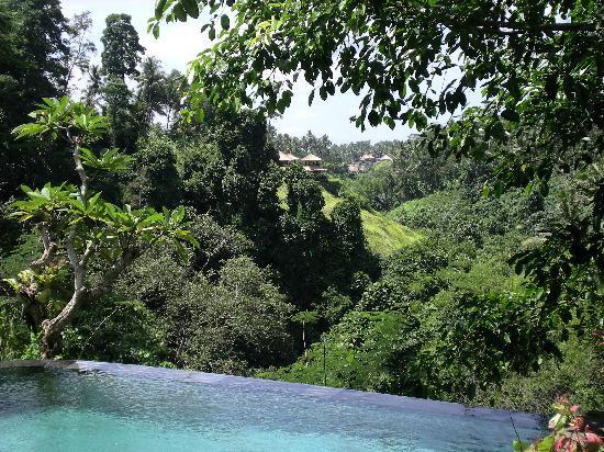 Villa Awang Awang: The view from the pool.