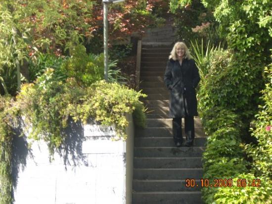 Νέλσον, Νέα Ζηλανδία: nannas