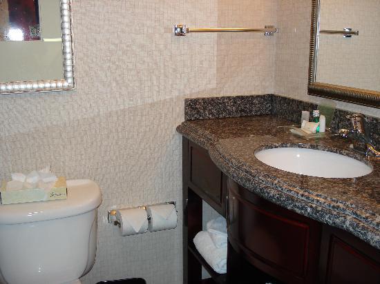 bathroom counters. Holiday Inn Daytona Beach LPGA Blvd  Nice bathroom counters Picture of