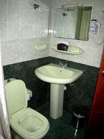 Golden Oasis Hotel : Bathroom - outdated and dirty