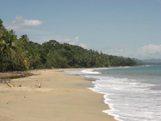 Cabinas Punta Uva: beach