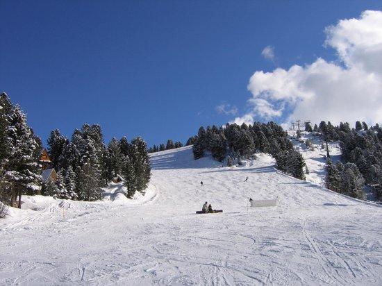 Province of Trento, Italy: Val di Fiemme - Alpe Cermis