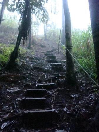 Hidden Valley Inn: Steps on path