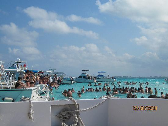Captain Marvin's : Sandbar at Stingray City - the water is crystal clear