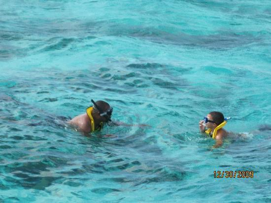 Captain Marvin's : Snorkeling in Cayman with Captain Marvins