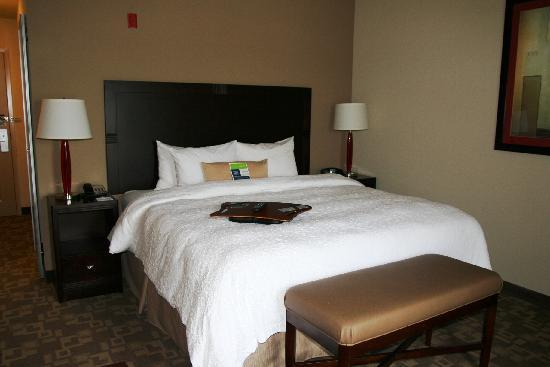 Hampton Inn Greenville: Standard King room