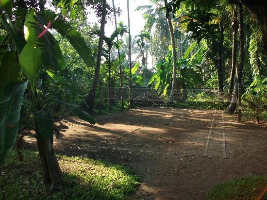 Parnasaala: Badminton court