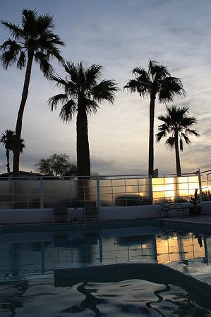 Sagewater Spa: palms and pool evening