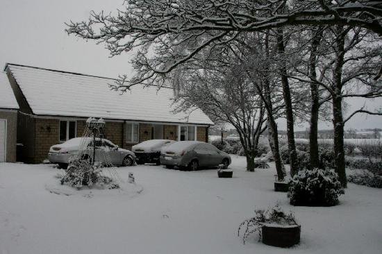 Goldilands B & B: The bungalow at Goldilands in snow