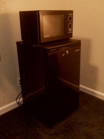 Hotel Rose Garden: microwave and fridge