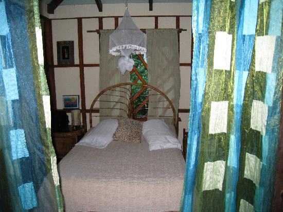 Hotel Banana Azul: our room in the sloth house