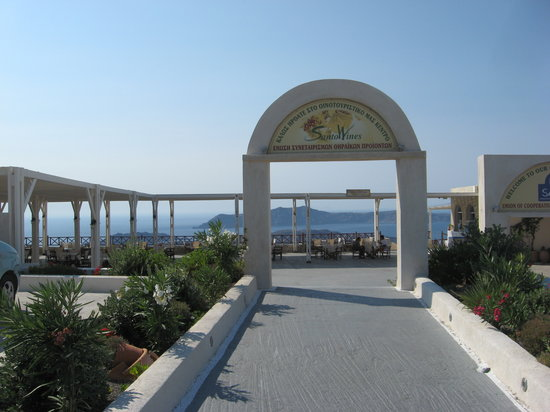 Pyrgos, Hellas: Santo Winery