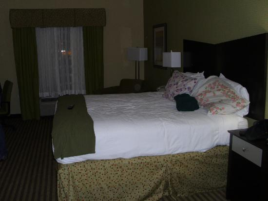 Holiday Inn Express Hotel & Suites Newport South: our plush bed