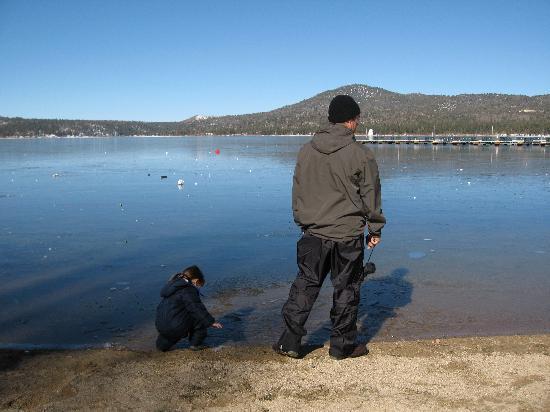 Honey Bear Lodge & Cabins: Down at the lake