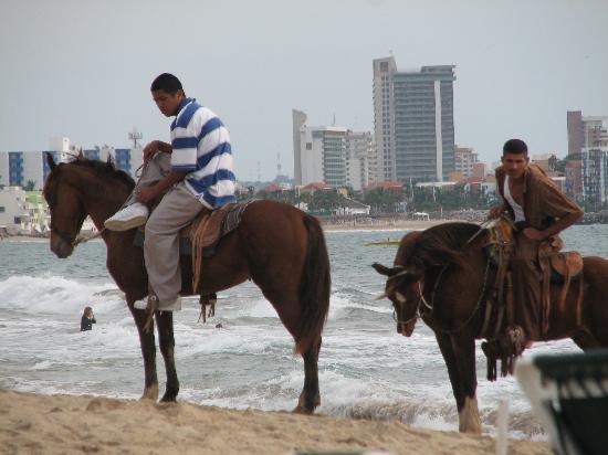 Sea Garden Mazatlan: Horses to Ride