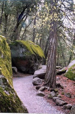 San Andreas, Californien: Mirror Lake Trail
