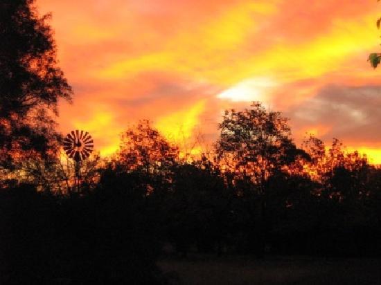 Sunset at GRATEFUL - Christian Guest House (Sipreslaan Langenhoven Park / Bainsvlei, Bloemfontei