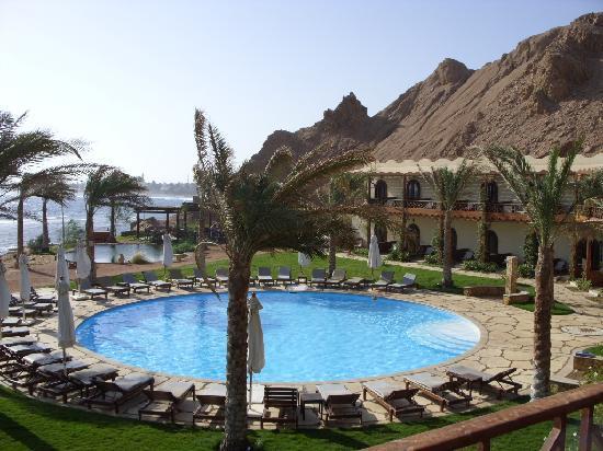 Dahab Paradise : Paradise indeed