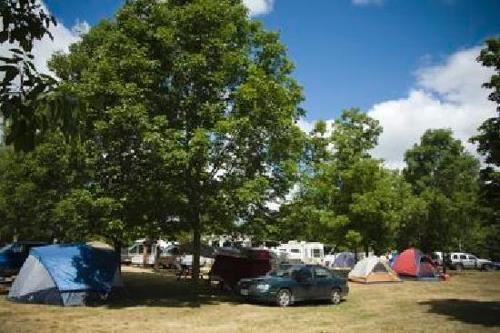 Bare Oaks Family Naturist Park: Campground