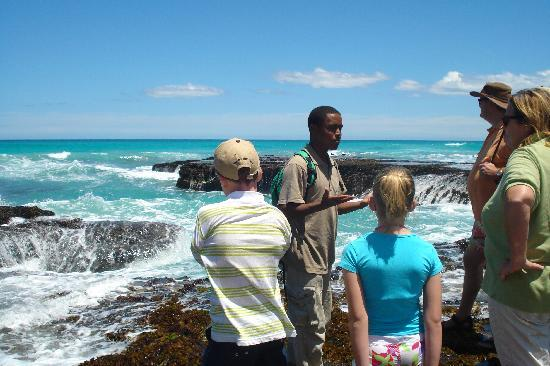 De Hoop Nature Reserve Cottages : Guided walk intertidal pools