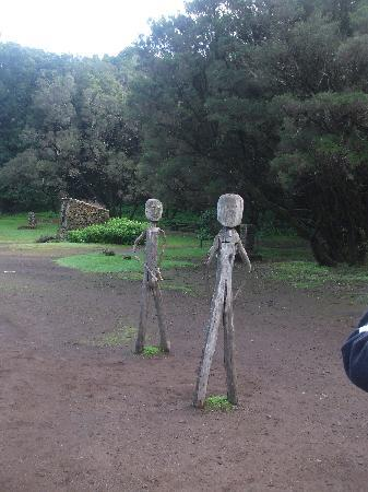 wooden statues at natural park in la gomera