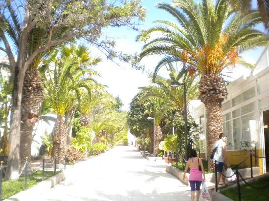 Apartamentos Plataneras Hotel Tenerife: ingresso