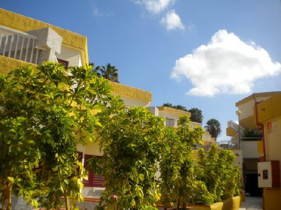 Apartamentos Plataneras Hotel Tenerife : appartamenti