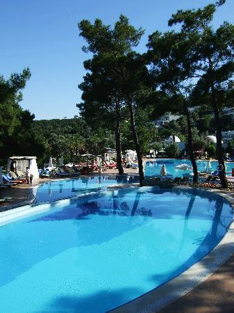 Torba, Turki: main swimming pool