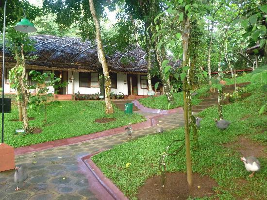 Spice Village : chambre bungalow