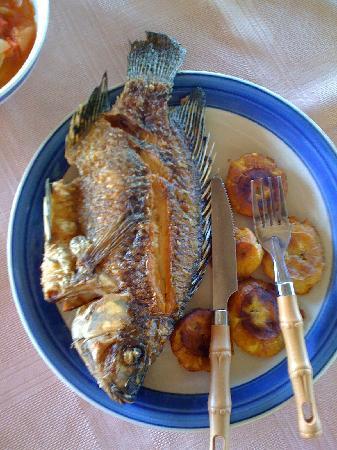Isletas El Roble: Lunch!
