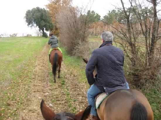 Fun in Tuscany: Horseback