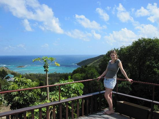Spring Hotel Bequia: THE VIEWS