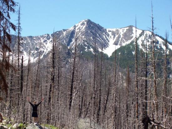 Philipsburg, Montana: ...however, the lack of forest cover also made for some great views including this one