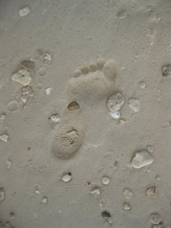 Seven Mile Beach, Grand Cayman : Leaving my footprint all over this island!