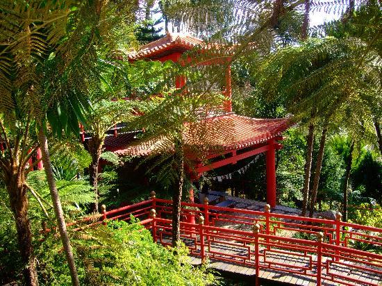 Central Lake At Monte Tropical Gardens Picture Of Monte Palace Tropical Garden Funchal
