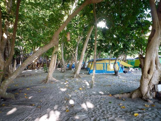 Laoliang Island Resort: the tents, view from the restaurant area.